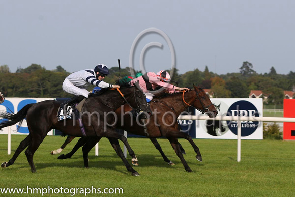 01 Toe The Line and F M Berry - - 01st (9 ,pink, black hoop ) Trainer - J E Keily