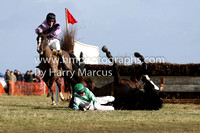 09 Lucky Lucky Me  H Dunne Fell - Trainer : Peter Maher, White,green chevron Horse and Rider Ok