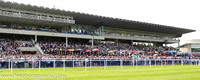Packed stands at Irish Champions Day at Leopardstown